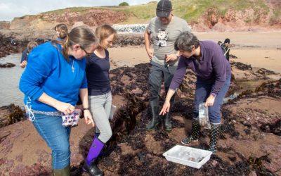 Seaweed ID Course