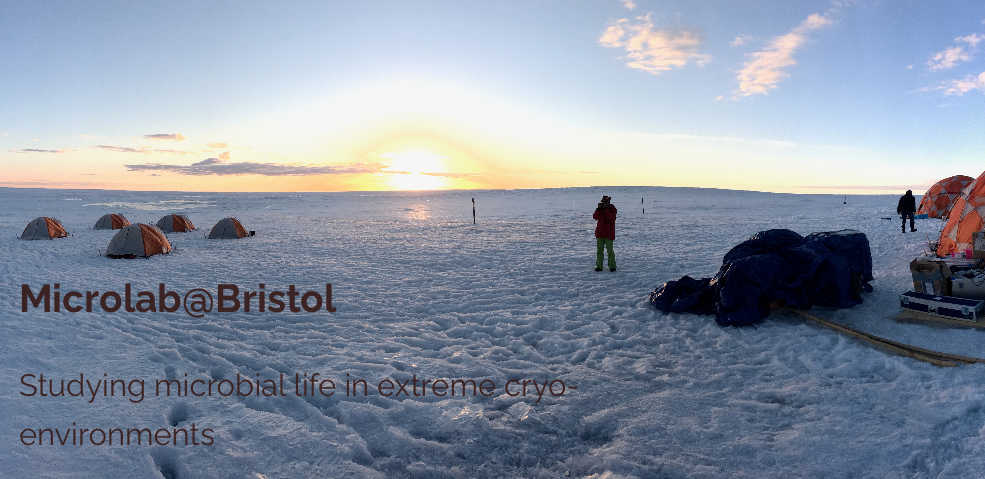 Research Associate Position available at the Bristol Glaciology Centre, University of Bristol