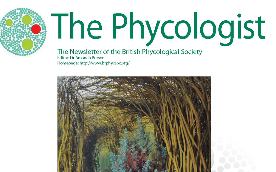 Just out! The Phycologist 99 – Autumn 2020